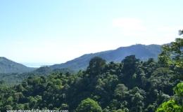 Tour de Lombok (2) : Pusuk Peak, Menatap Trio Gili Dari HutanMonyet